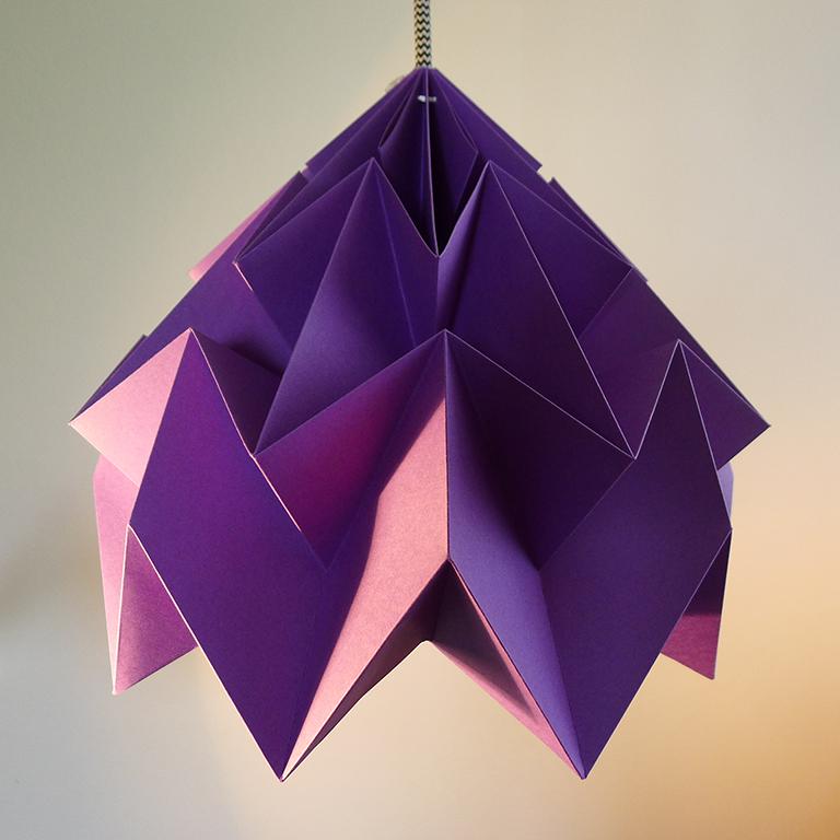 Papilio violet